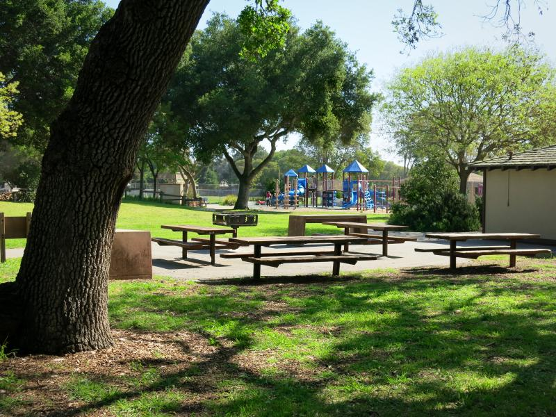 Picnic areas in woodland - view of playground