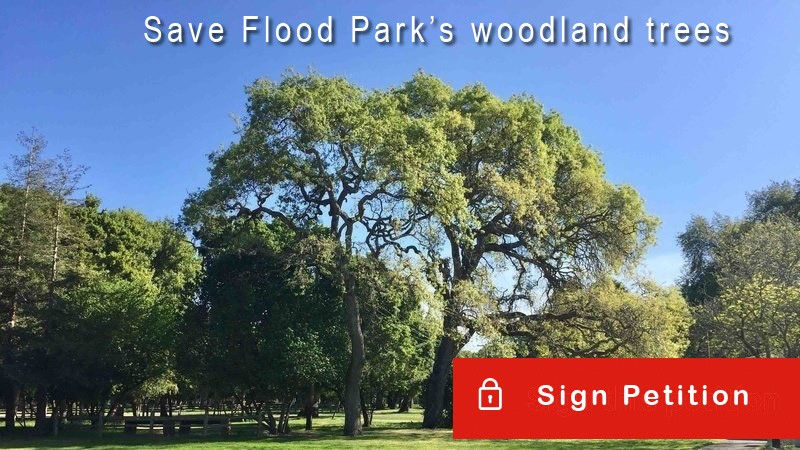 Help save the woodland trees - read and sign petition